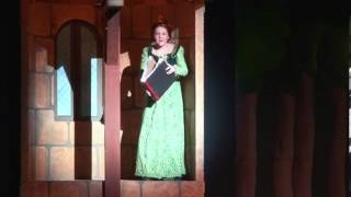 Princess In A Tower Shrek Park Playhouse
