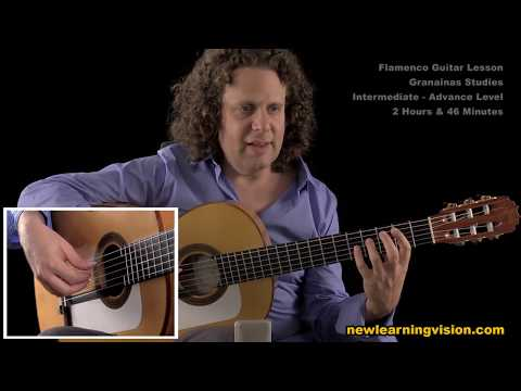 Demo of Flamenco Guitar Lesson. Granainas Studies by Adam de