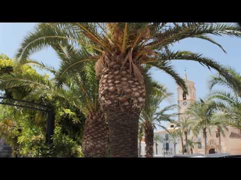 Albox Spain Fountain And Church