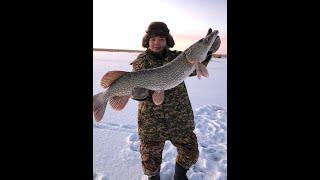 Рыбалка на озере Султан Коргалжин Fishing and recreation
