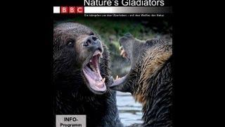 BBC - Nature Gladiators 1 - Tierkämpfe - Film