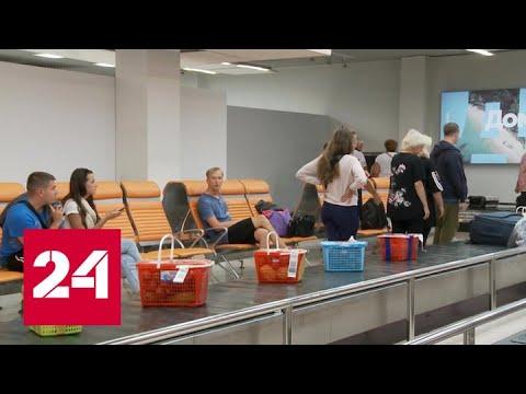 В силу вступили новые правила ввоза в Россию фруктов и овощей - Россия 24