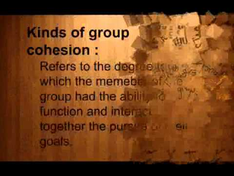 Social group and Social organization - socio 1