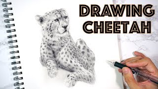 🐆 How to Draw a Realistic Cheetah - Realistic Art - Sketching 鉛筆畫獵豹 素描豹
