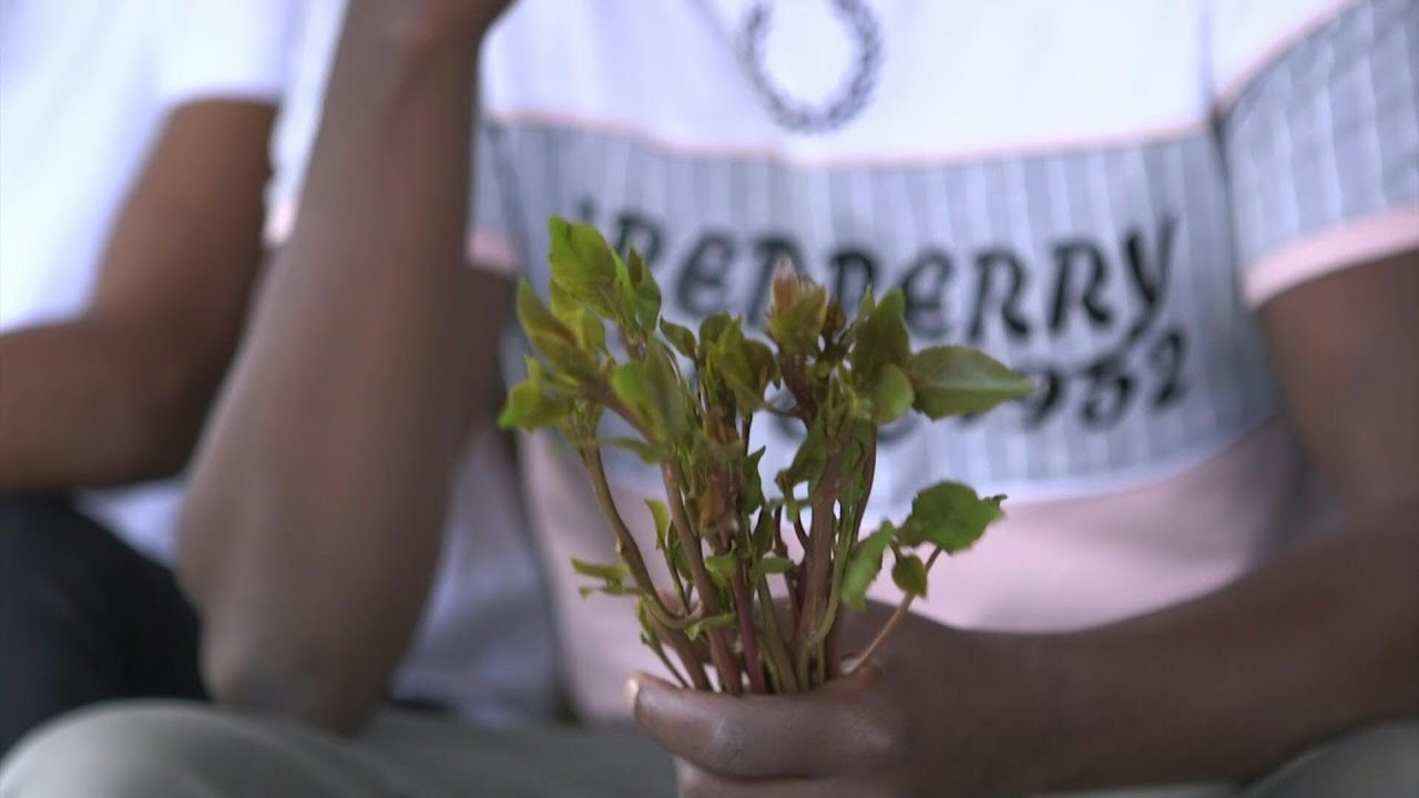 In Ethiopia, a rehab centre takes on khat addiction | AFP