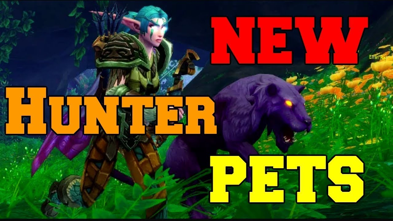 Wow 7 3 5 New Hunter Pets Tameable World Of Warcraft Hunter Show Youtube