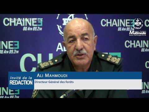 Ali Mahmoudi Directeur Général des forêts