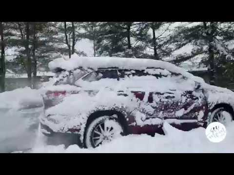 Toyota Highlander In The Snow