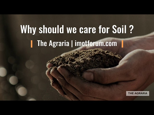 Soils Under Pollution - Threat to Food security and Ecosystem sustainability