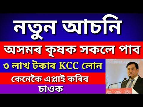 নতুন আচনি  সকলোৱে পাব ৩ লাখ টকাৰ KCC LOAN | এতিয়াই  KCC LOAN APPLY কৰক | Mintu assam technical