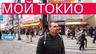 Япония. Фильм Мой Токио. Часть 1. York Travel.