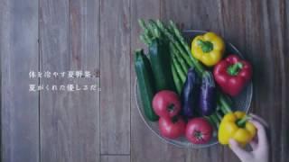 この動画は「藤岡弘、地球温暖化防止道場」のサンプル動画として作成さ...