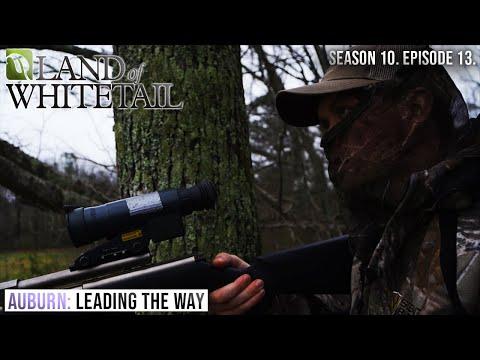Auburn University Deer Research | Land of Whitetail