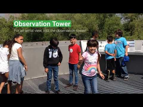 Water Discovery Field Trip
