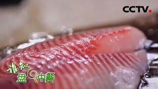 《谁知盘中餐》 20200607 文昌罗非鱼 鲜味水中来|CCTV农业