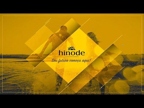 Plano de Marketing Hinode 2016 - Erick Bastos