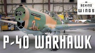 P-40 Warhawk   Behind the Wings