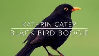 Black Bird Boogie