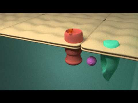 G-Protein Coupled Receptor (GPCR) animation