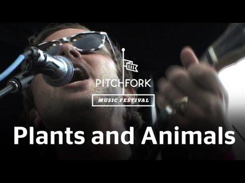 Plants And Animals - Faerie Dance - Pitchfork Music Festival 2009