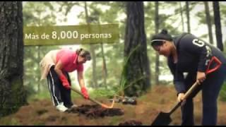Video Logros de la Fundación Hombre Naturaleza: Educando