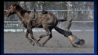 Конный спорт шокирующие стоп-кадры ,Horse riding and a little photo of him