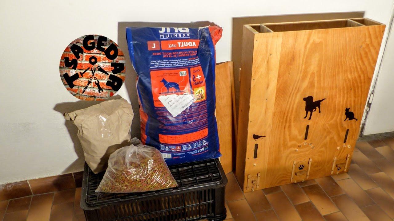 Diy Food Dispenser For Cats