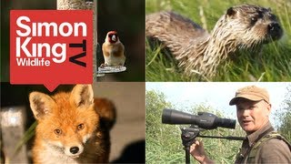 Introduction - Welcome to Simon King Wildlife TV