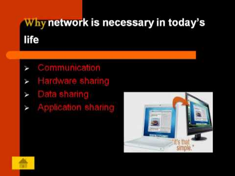 PPT Presentation On Networking and LAN