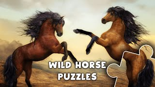Wild horses & ponies jigsaw puzzles for kids & toddlers