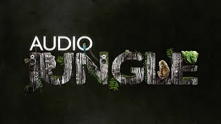 Sound - Horror Hit 2 | AudioJungle Download