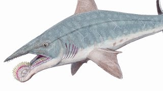 Top 10 Weirdest Prehistoric Creatures