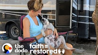 Couple Meets A Beach Dog In Mexico Who Changes Their Life | The Dodo Faith = Restored