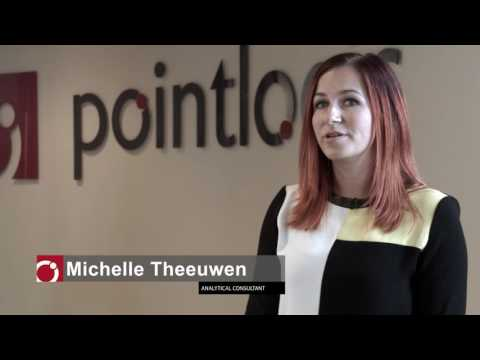 Analytical Consultant at Pointlogic, A Nielsen Company