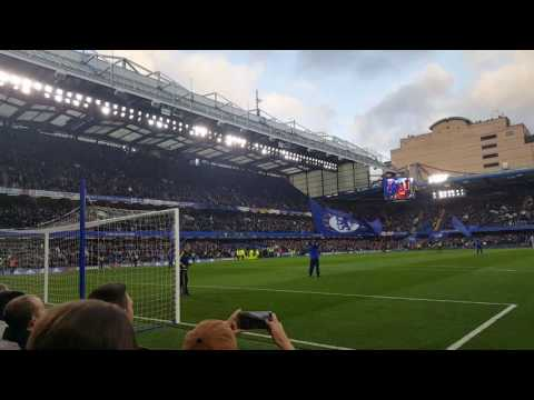 Stamford Bridge LIQUIDATOR Song Before the game