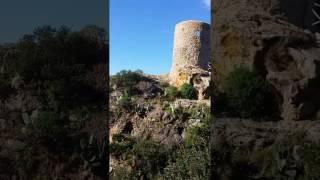Mallorca Nature 3