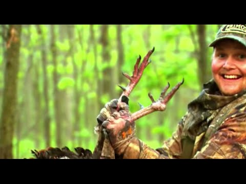 Hunting missouri and iowa longbeards i primos truth about for Iowa out of state fishing license