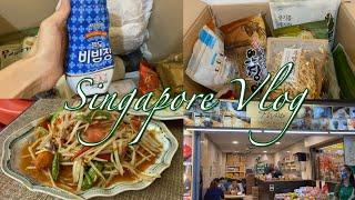 싱가포르 브이로그 #5…