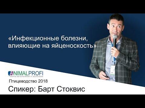 Отчетное видео Форума ANIMALPROFI 2018. Птицеводство