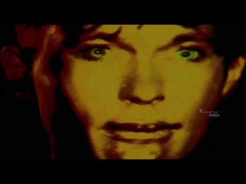 Shed Seven - Going For Gold - Official Video Song HD