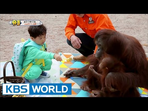 The Return of Superman | 슈퍼맨이 돌아왔다 -Ep.182: What's Important is All Around Us [ENG/IND/2017.05.21]