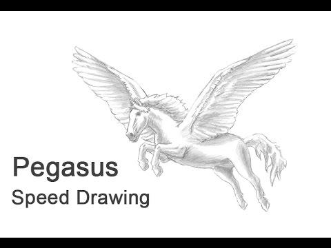 Pegasus Time-lapse / Speed Drawing