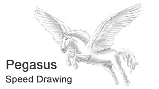 Pegasus Time-lapse / Speed Drawing
