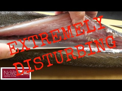 WARNING!! TAPEWORM PARASITE SUSHI! Would You Eat This Fish?