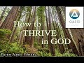 How to Thrive in God