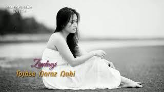 Tujhse Naraz Nahi Zindagi Hairan Hu Mai super lyrics video status sad romantic love beautiful song