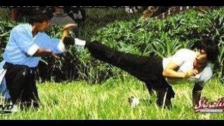 Пьяная обезьяна   (боевик, кунг - фу. Кан Чинь)