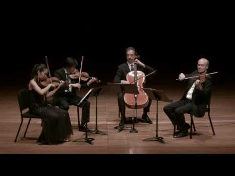 Borodin: Quartet No. 2 in D major for Strings, I. Allegro moderato