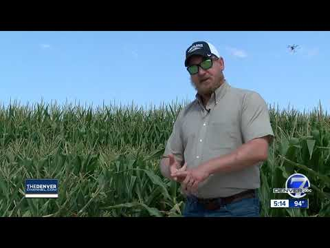 USDA Researchers In Greeley Are Using Technology To Maximize Water Use For Farmers