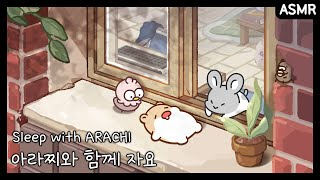 방구석 아라찌🐹   ASMR   나른한 오후, 아라찌와 함께 낮잠 자요   애니메이션/만화/햄스터/animation/cartoon/hamster